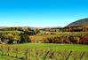 Berkshires near Vermont